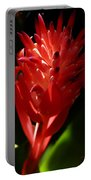 Sunlit Red Bromeliad 2 Portable Battery Charger