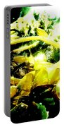 Sunlit Seaweed Portable Battery Charger