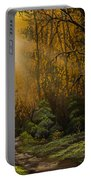 Sunlit Trail Portable Battery Charger