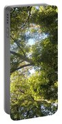 Sunlit Tree Tops Portable Battery Charger
