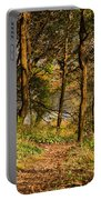 Sunlit Woods In Late Autumn Portable Battery Charger