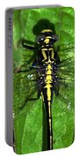 Sunning Dragon Portable Battery Charger