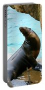 Sunning Sea Lion Portable Battery Charger