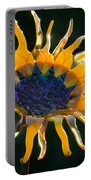 Sunny Glass Portable Battery Charger
