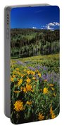 Sunny Spring Day Portable Battery Charger