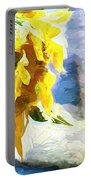 Sunnyabstracted Portable Battery Charger