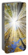 Sunrays In The Forest Portable Battery Charger