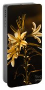 Sunrise Ajo Lily Portable Battery Charger