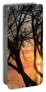 Sunrise Through The Chaos Of Willow Branches Portable Battery Charger