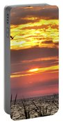 Sunrise Through The Grass Portable Battery Charger