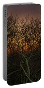 Sunset At The Presidio   Portable Battery Charger