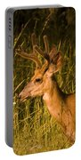 Sunset Buck Portable Battery Charger