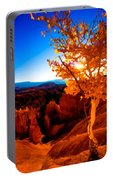 Sunset Fall Portable Battery Charger