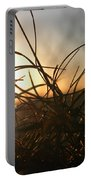 Sunset Grass 2 Portable Battery Charger