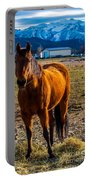 Sunset Bay Horse Heber Valley Utah Portable Battery Charger