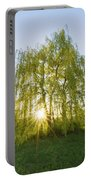 Sunset Willow Portable Battery Charger