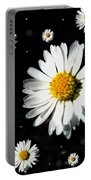 Sunshine In Your Home Portable Battery Charger