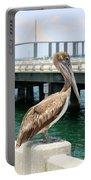 Sunshine Skyway And Pelican Portable Battery Charger by Carol Groenen