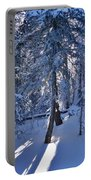 Sunshine Through Winter Trees Portable Battery Charger