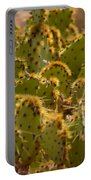 Super Cacti Portable Battery Charger