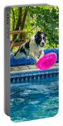 Super Dog 2 Portable Battery Charger