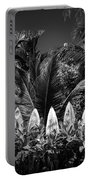 Surf Board Fence Maui Hawaii Black And White Portable Battery Charger