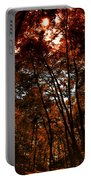 Surrounded By Autumn Portable Battery Charger