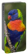 Swainsons Lorikeet Portable Battery Charger