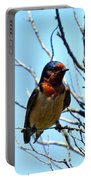 Swallow Glance Portable Battery Charger