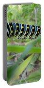 Swallowtail Caterpillar Portable Battery Charger