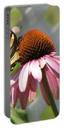 Looking Up At Swallowtail On Coneflower Portable Battery Charger