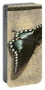 Swallowtail On The Rocks Portable Battery Charger
