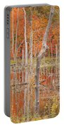 Swamp Colors Portable Battery Charger