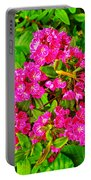 Swamp Laurel On Ferryland Head In Newfoundland  Portable Battery Charger