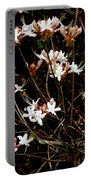Swamp Pretties Portable Battery Charger
