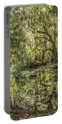 Swamp Reflections Portable Battery Charger