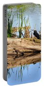 Swamp Scene Portable Battery Charger