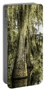 Swamp View Portable Battery Charger