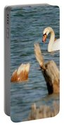 Swan Amid Stumps Portable Battery Charger
