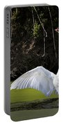 Swan Wings Spread Portable Battery Charger