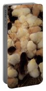 Sweet Baby Chicks For Sale Portable Battery Charger