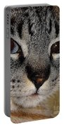 Cat - Sweet - Boy Portable Battery Charger