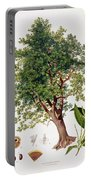 Sweet Chestnut Portable Battery Charger