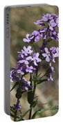 Sweet Dames Rocket Portable Battery Charger