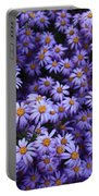 Sweet Dreams Of Purple Daisies Portable Battery Charger