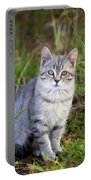 Sweet Little Tabby Kitten Portable Battery Charger