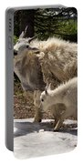 Sweet Mama Goat Portable Battery Charger