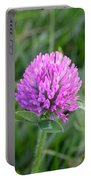Sweet Pink Clover Portable Battery Charger