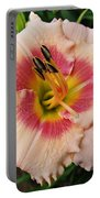 Sweet Sugar Candy Daylily Portable Battery Charger