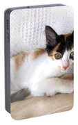 Sweet The Kitten Portable Battery Charger